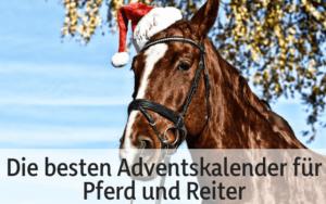 Die besten Adventskalender für Pferd und Reiter