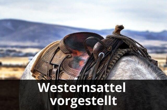 Westernsattel vorgestellt
