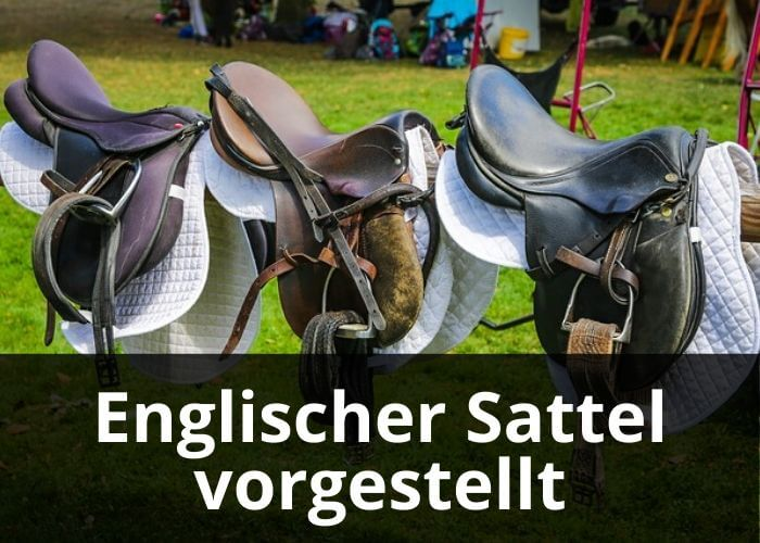 Englischer Sattel vorgestellt