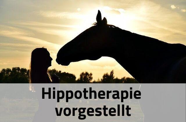 Hippotherapie vorgestellt
