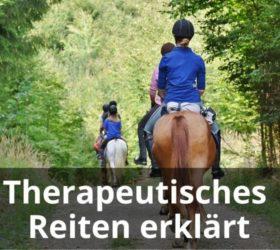 Therapeutisches Reiten erklärt