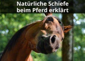 Natürliche Schiefe beim Pferd